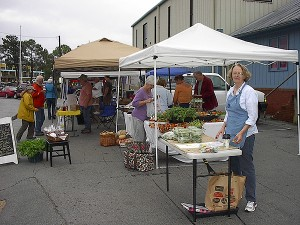 Humble beginnings: Jackie at the Oriental, NC Saturday morning Farmer's Market.