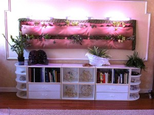 vegetables-over-bookcase